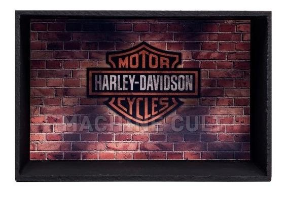 Expositor De Miniaturas Harley-davidson - 1:18 E 1:24 - Md1