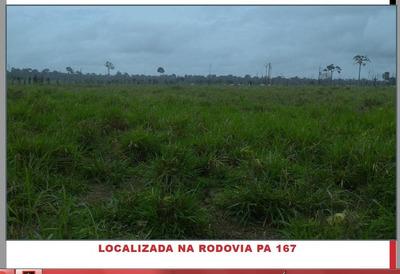 Fazenda Rural À Venda, Altamira-pa - Codigo: Fa0189 - Fa0189