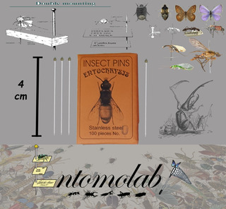 Alfileres Entomológicos Entochrysis Inoxidable #0 Insectos