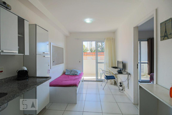 Apartamento Para Aluguel - Santo Amaro, 1 Quarto, 33 - 893054060