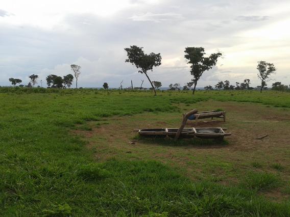 Fazenda A Venda Região Barra Do Garças E Novo S.joaquim Mt