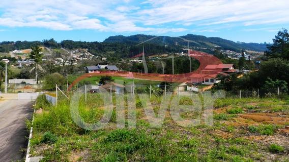 Residencial Colina, Terreno, Fundo Canoas, Rio Do Sul, Santa Catarina - Te00047 - 33586022