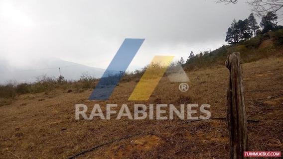 Haciendas - Fincas En Venta, Estanques