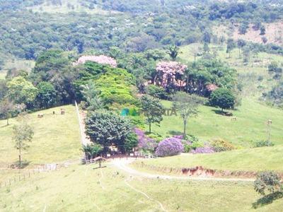 Fazenda - 191 Ha - Barão De Cocais (mg) - Cod: Mta579