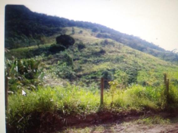 Area Para Sitio 3 Hectares