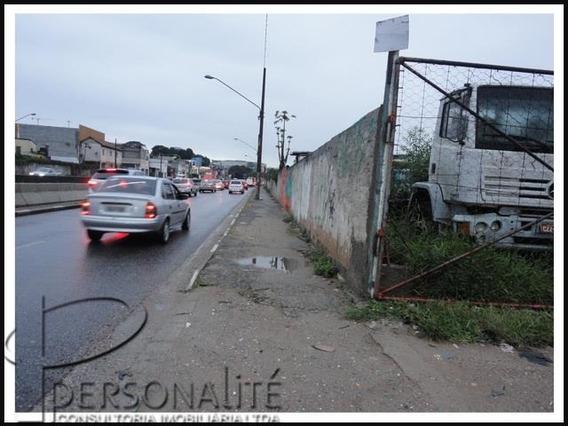 Terreno Padrão Em São Paulo - Sp - Te0052_prst