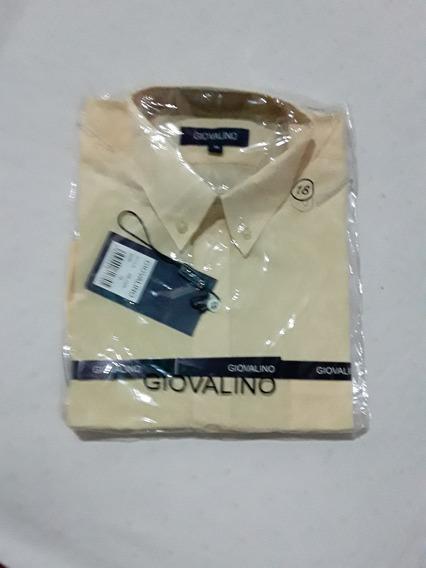 Camisa Para Niño En Color Amarillo Claro Talla 18