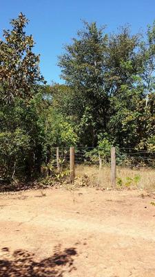 Fazenda Em Novo Acordo - To 128 Alq, Aptidão - 80 P/ Soja - 448