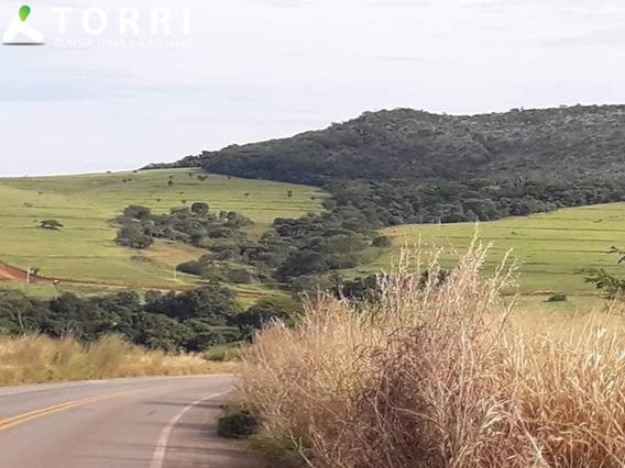 Fazenda Monte Alegre Ii No Município De Goianésia - Fa00072 - 68235036