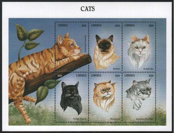 1999 Felinos - Gatos Del Mundo- Liberia Mnh