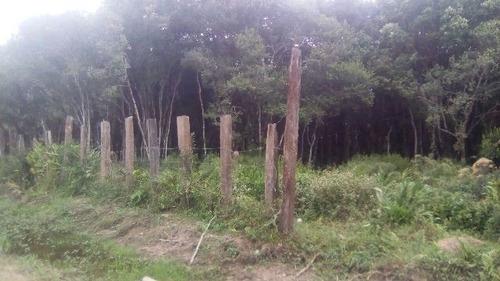 Grande Terreno De Chácara Em Itanhaém - Ch031