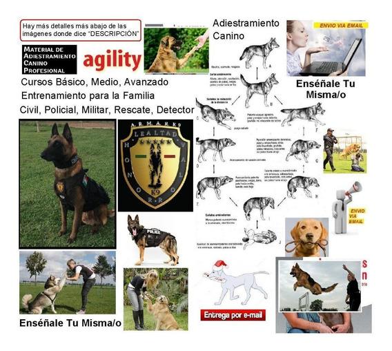 Adiestramiento Canino Entrena Perros Cursos K9 Info X 58