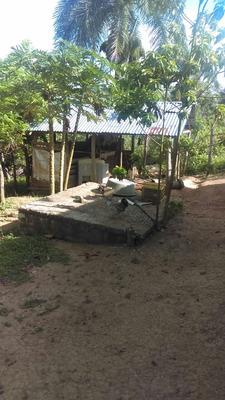 Finquita Agrícola En Loma Larga De Hato Mayor
