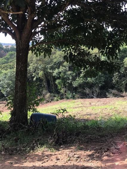 Terrenos Bem Localizados, Local Privilegiado Visite M.