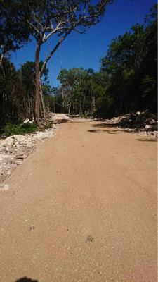 Terrenos A 20 Min De La Playa En Tulum