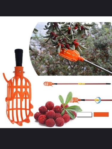 Recolector De Frutas De Árboles Dispositivo Bajar Fruta