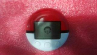 Pokewalker Nintendo Ds