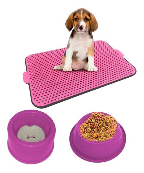 Kit Dog Xixi Dog Bebedouro Pelo Longo + Comedouro Cores