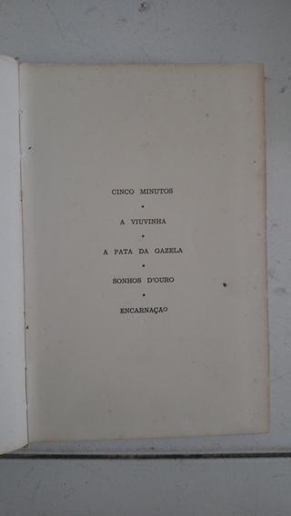 A Viuvinha - A Pata Da Gazela - Sonhos Douro - Encarnação