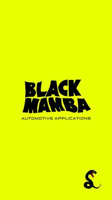 Black Mamba: Mecánica Y Estética Automotriz