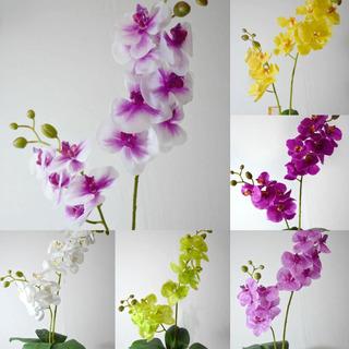 Orquídea Artificial Tacto Natural Con 2 Varas, 60 Cms