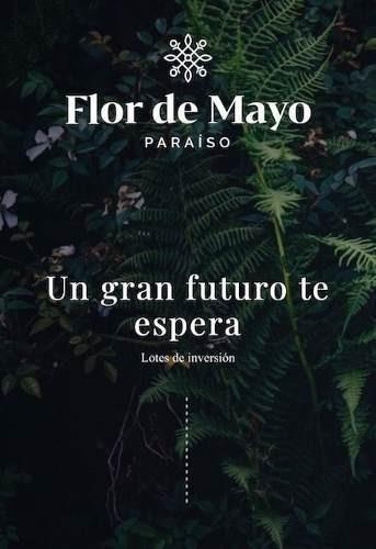 Lotes De Inversión Flor De Mayo Enfrente A La Zona Económica