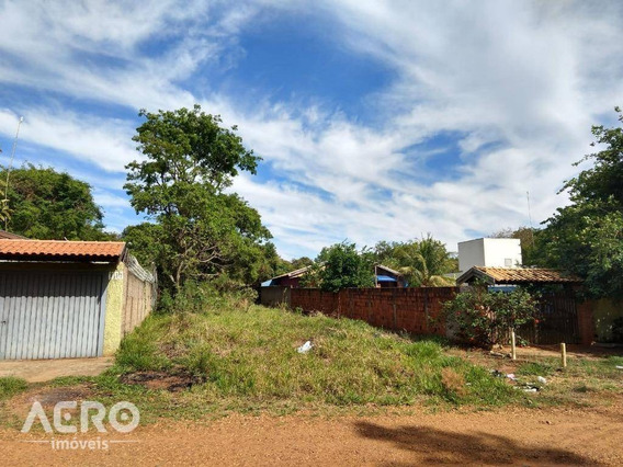 Terreno À Venda, 500 M² Por R$ 80.000,00 - Vale Do Igapó - Bauru/sp - Te0571