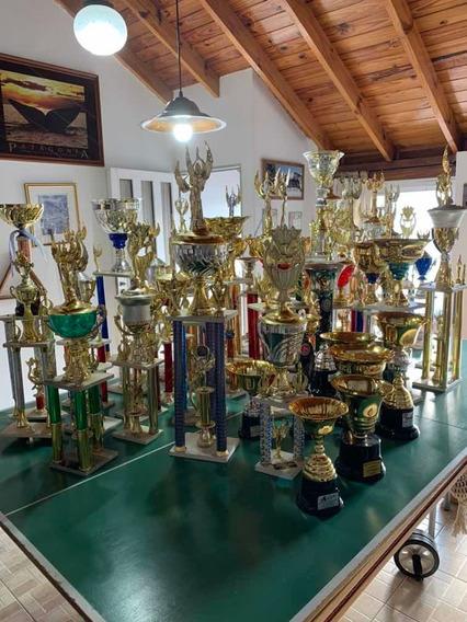 Lote 50 Trofeos. Leer Descripción
