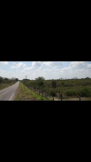 Rancho En Candelaria Campeche