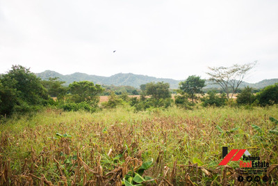Venta De Finca En Ochomogo - Nandaime.
