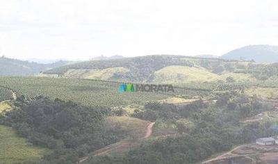 Excelente Fazenda Café / Leite 870 Ha Oliveira (mg) - Codigo: Fa0084 - Fa0084