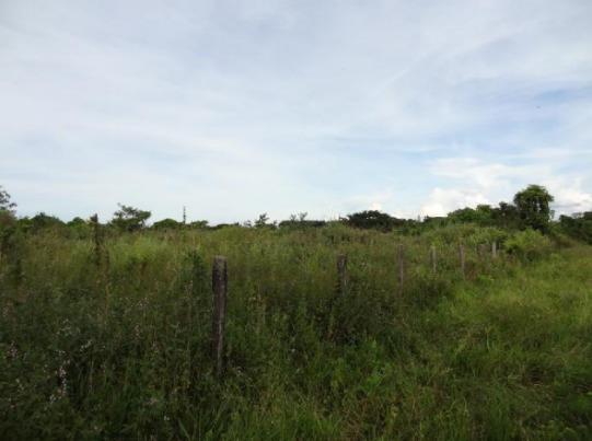 Se Vende Lote En Yopal, Casanare.vereda Mata Larga