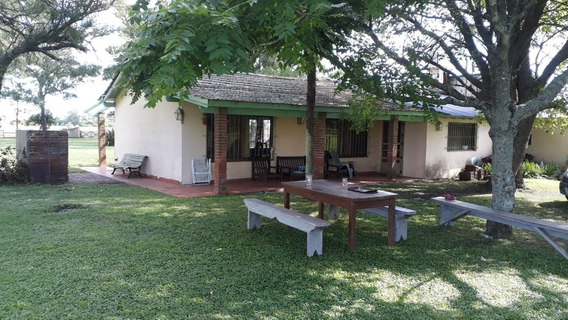 Campo En Madariaga- 50 Has- Casa, Caballeriza, Pileta.