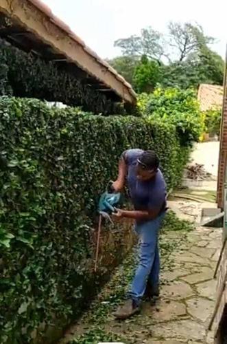 Imagem 1 de 2 de Serviço Jardinagem E Paisagismo