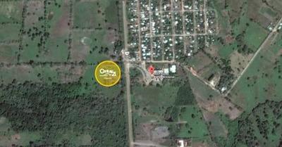 Terreno En Acayucan A Orilla De Carretera Frente Al Bachillerato Carlos Grossman