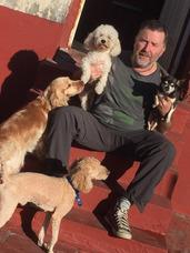Guardería Canina Para Perros Pequeños,en Capital Sin Jaulas