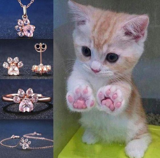 Bijouterie Patitas De Gato (anillo ,collar ,aros Y Pulsera)