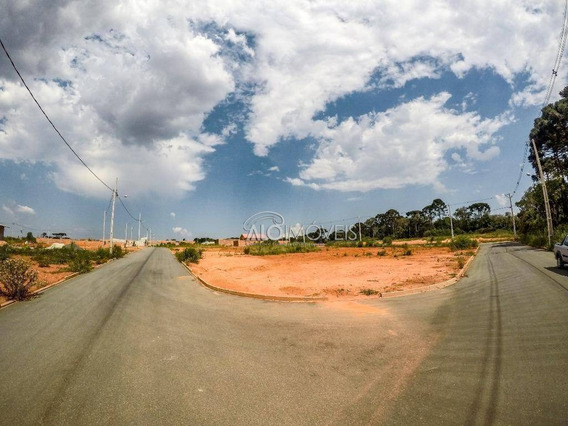 Terreno À Venda, 220 M² Por R$ 131.500,00 - Estados - Fazenda Rio Grande/pr - Te0084