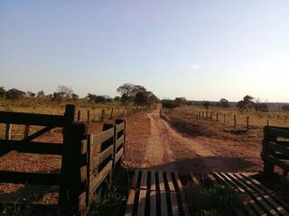 Fazenda Para Venda Em Barra Do Garças, Zona Rural - 795986