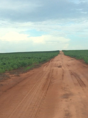Fazenda Em Barra Do Ouro - To, Dupla Aptidão - 159