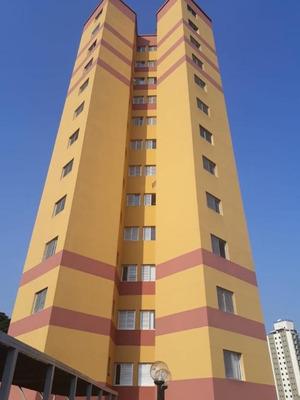 Lindo Apartamento 2 Dorm Suite Ao Lado Da Engenheiro Caetano Alvares - Ap3093