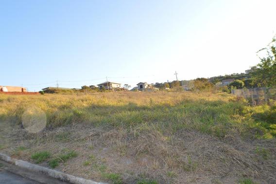 Terreno Padrão Em Vargem - Sp - Te0063