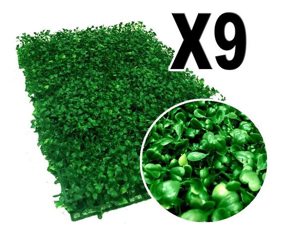 2.16 M2 De Follaje Muro Verde P6 Arrayan Rs9
