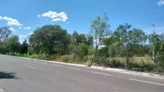 Terreno Venta 10,000 M2 Frente A Eden Los Sabinos, Aguascalientes