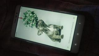 Xiaomi Tela