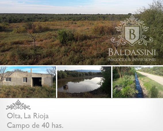 Campo De 40 Has En Olta - La Rioja Sobre Ruta En $$$$