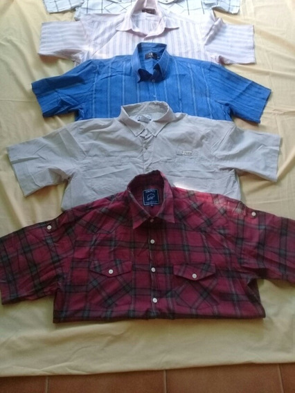 Camisas Mangas Corta Xl