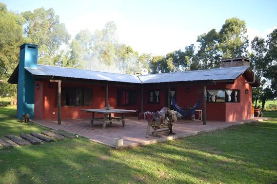 Campo En Gral. Madariaga