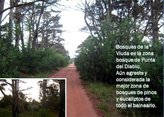 Venta 2 Lotes 1000 Metros Punta Del Diablo - Rocha Uruguay