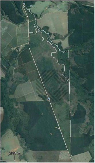 Fazenda À Venda, 3635300 M² Por R$ 5.350.000 - Área Rural - Angatuba/sp - Fa0047